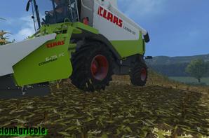 Moisson de Maïs avec Claas Lexion 550 + New Holland t6.120 + Benne Dezeure D10T