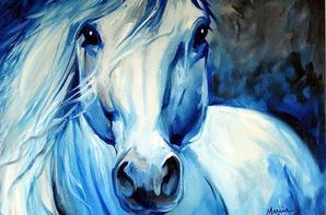 compile de chevaux