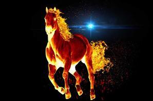 chevaux de feux