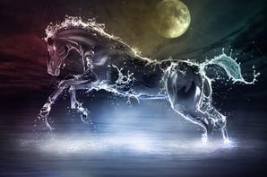 chevaux d'eaux