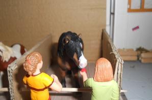 des nouveaux cavaliers juste avant noël !!