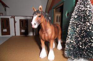 Des nouveaux chevaux.