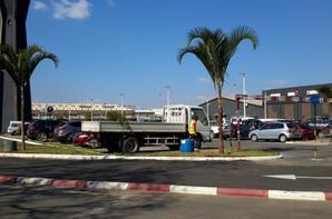 Plantation de palmiers chez A'koor Digue