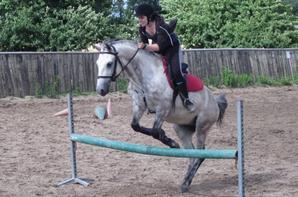 Equitation ~
