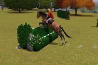 Sims 3 Obstacle Spéciaux
