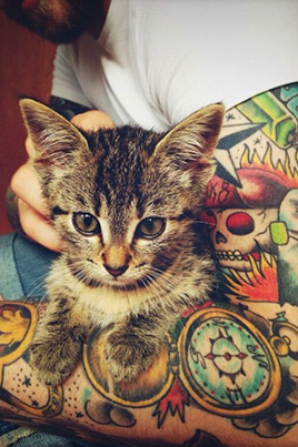 Chatons, Tattoos et Furet...
