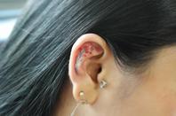 Les oreilles, ça vous tente?