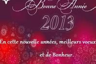 boe annee 2013