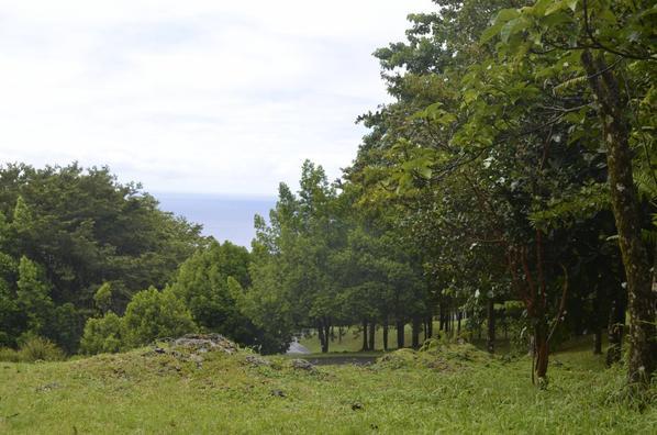 Dimanche 19 avril 2015 Rando Santé à Bois Blanc Sainte-Rose
