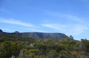 Dimanche 16 août 2015 : Randonnées Piton Argamasse Plaine des Cafres