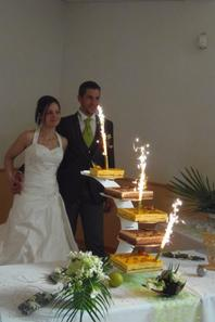 mariés sous palmiers