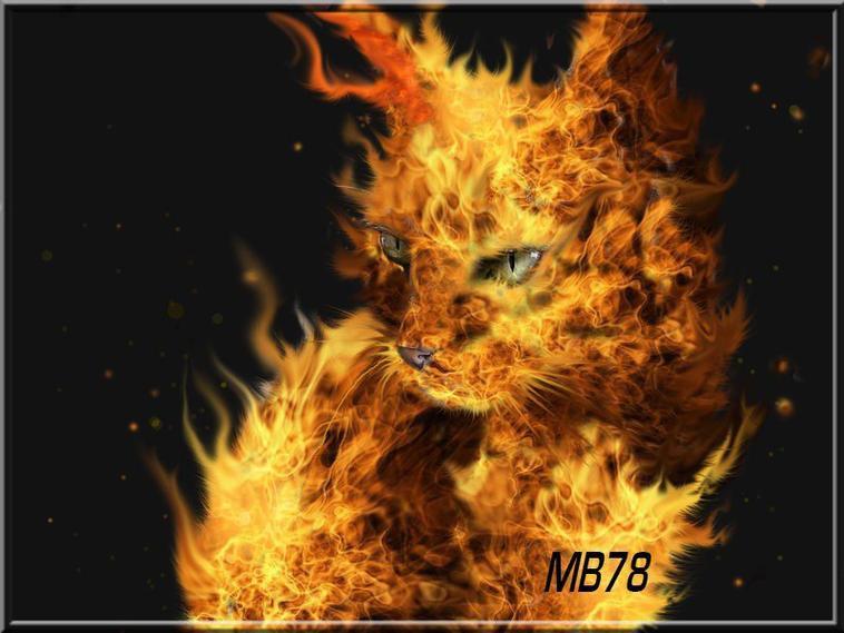 à jouer avec le feu, on finit par se brûler....