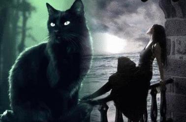 les chats noirs sont tout aussi mignons que les autres... ils ne m'ont jamais porté malheur!
