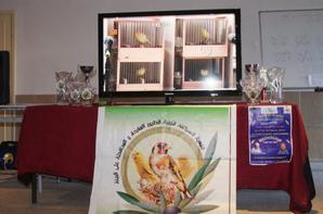 autres photos du doncoure malinois kelaa 06/01/2013