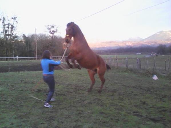 Entrainement tour de cirque :)