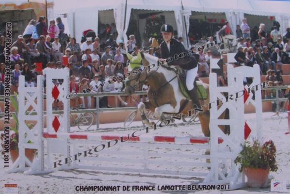 Lamotte-Beuvron, finale
