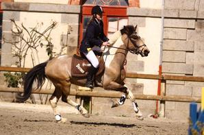 Championnats de Bretagne 2009- Club Poney Elite finale