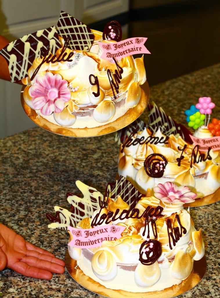 Nos différents Gâteaux Glacés...