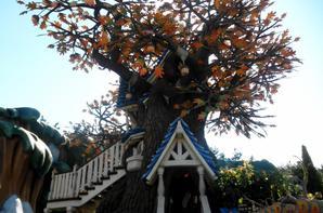Disneyland Tokyo (partie 2)