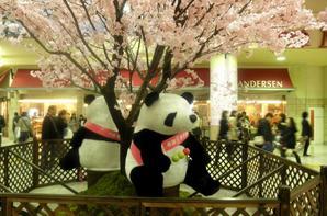 Ueno avec Yuko