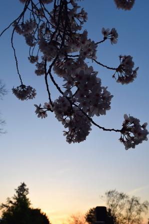Jeudi 2 Avril (partie 2).