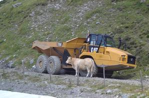 Photos de vacances dans les Hautes Pyrénées 65