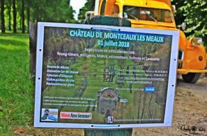 Sortie Choupette 1 Juillet 2018 avec Choupette ...