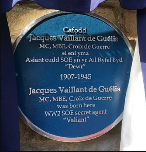 Jacques Vaillant De Guélis