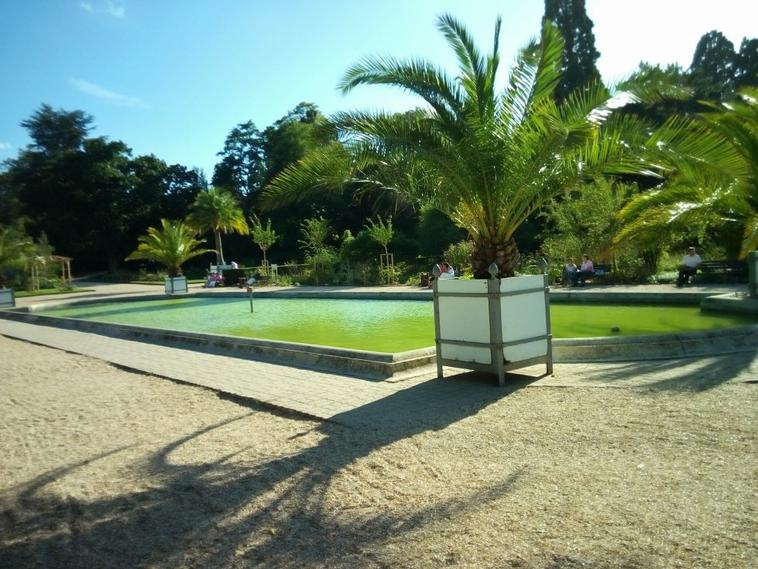 Photo fontaine/bassin , Au Jardin des Plantes , Rouen