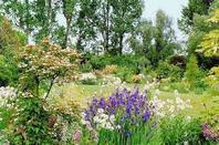 suite jardin 3