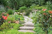 suite jardin 4