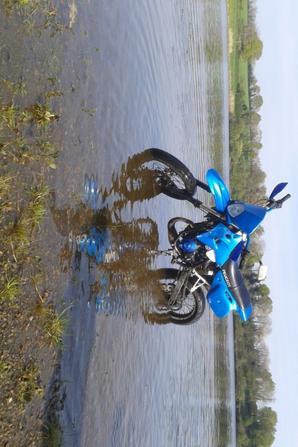 voila ma 50cc elle et bleux je les fait avec ma femme