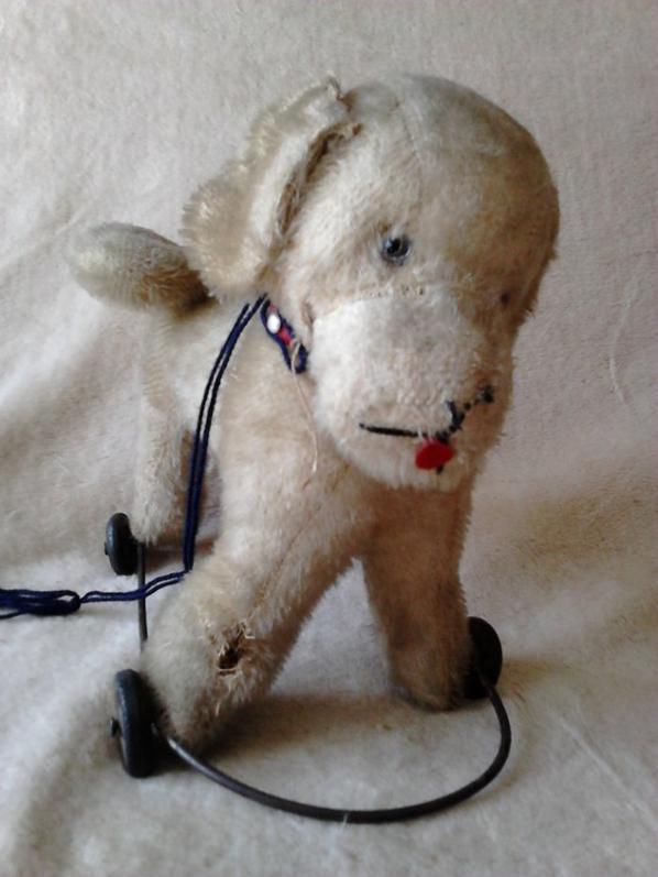 a vendre faire offre un chien ancien et un ours steiff 50cm