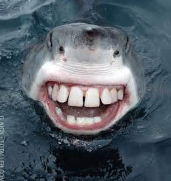 souriez vous etes filmer