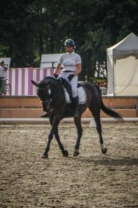 Championnat de France 2015 - Dressage (2)