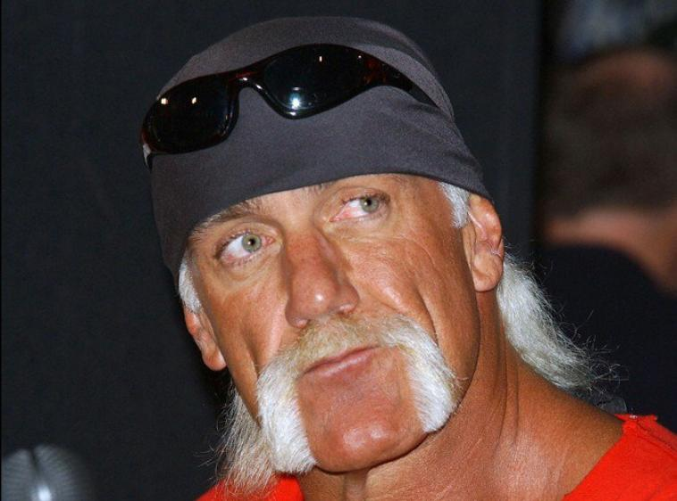 hulk hogan (article demande)