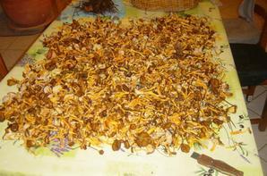 champignons et châtaignes