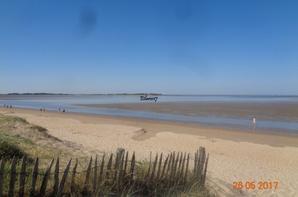 Marée basse... [photos personnelles]
