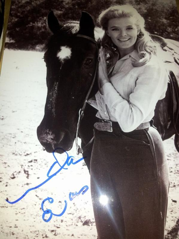 Linda Evans (La Grande Vallée, Tom Horn, Dynastie)