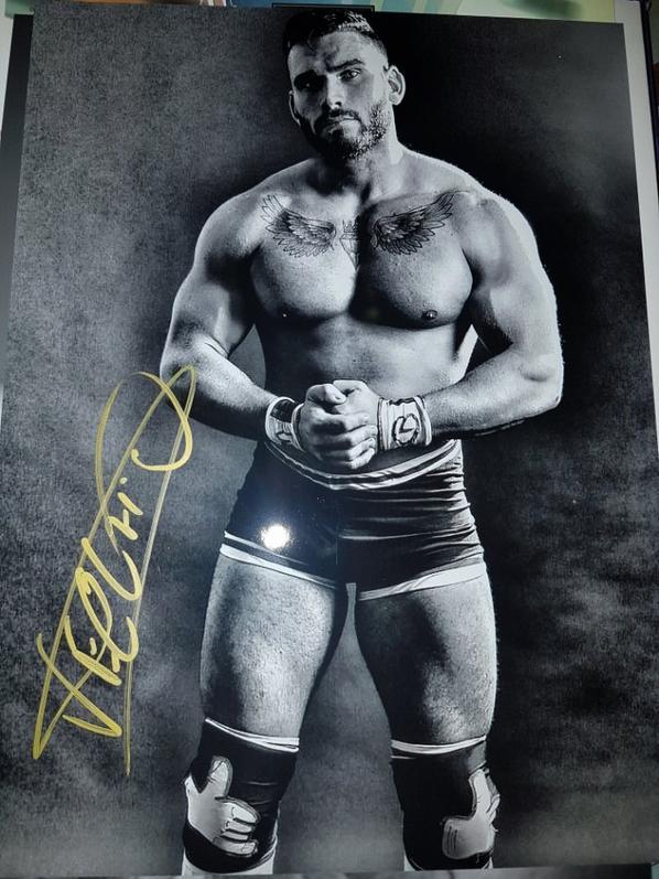 Mike D VECCHIO (Wrestler)