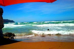 ..Next Summer..nchlh..