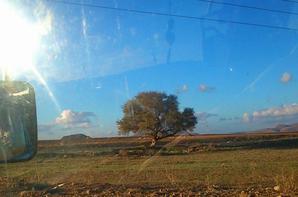 ..في الريف..هناك ما يستحق الحياه..