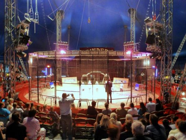 Spectacle cirque Pinder