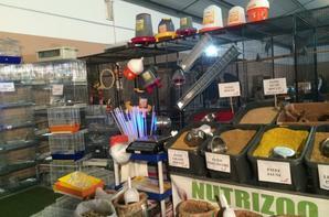 EXPOSITION NUTRIZOO REGIONAL SANARY
