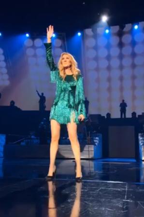 Le show du 31 mai 2017 est terminé ! Au revoir Céline plus que 2 show à Vegas avant ta tournée européenne ... Ca va changer de se spectacle qui est magique mais tjs pareil :/  J'espère qu elle va le changer un peu à son retour ! ainsi que cette robe verte ;)