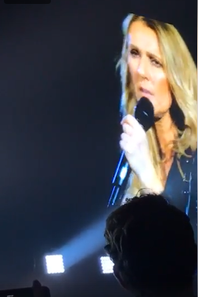 """Fin du spectacle, Céline le clôture avec une 5 ieme tenue. Elle chante peu avant 23 h """" Love of My Life """" du groupe Queen,  en version acoustique au milieu du parterre sur la régie."""
