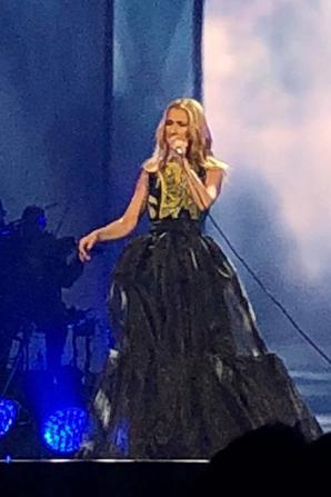 Ah une nouvelle tenue !!!!!! Une belle jupe bouffante sur une robe :)