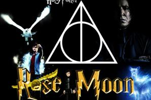 montage harry potter pour Rose-Moon-HP.sky