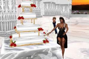 Nos 1an de mariage avec mon amour (Partie1)