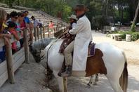 Les chevaux de OK Corral (6/9)